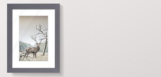 Fotolijsten Wood Antraciet
